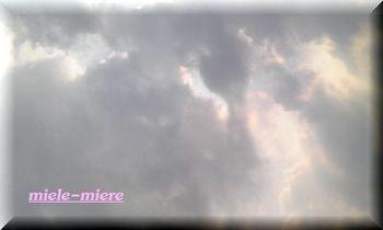 CAOE1JP8.jpg